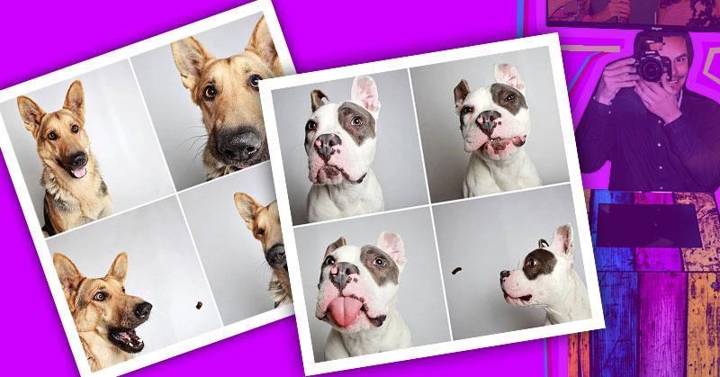 Fotomatón para perros protectora